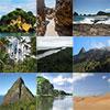 Galerie et module paysages naturels des Caraibes